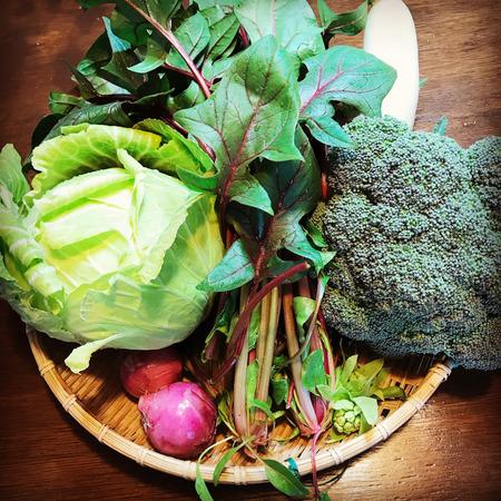 2.15野菜.jpg