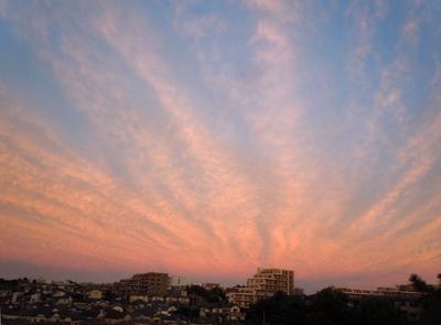 夕焼けblog.jpg